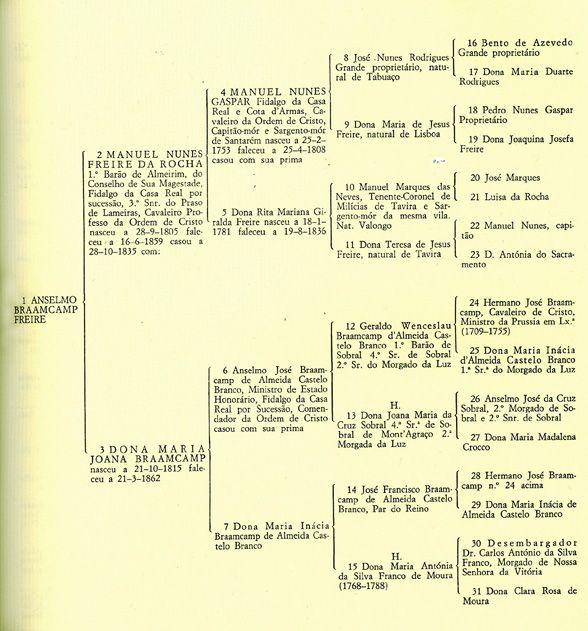 Anselmo Braamcamp Freire's family tree