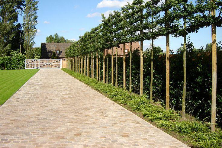 17 beste idee n over voortuin hek op pinterest tuin hekwerk hek idee n en hek - Hek begroeide ...