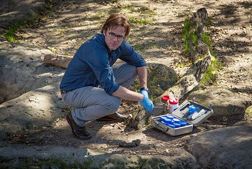 "Interview: Billy Burke of CBS' ""Zoo"""