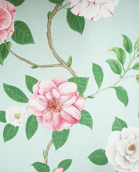 Christabel Wallpaper A Floral Wallpaper Featuring A Large Print Of Climbing  White And Coral Pink Rose Part 81