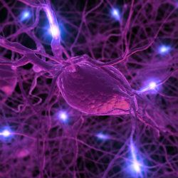 'Wi-Fi' Nanoparticles Send Signals From Inside The Brain | New findings published in the journal Future Medicine suggest that we may have another way forward.A medical research team at Florida International University injected 20 billion nanoparticles into the brains of mice,with the idea of establishing a kind of direct wireless connection to neurons. [Neuroscience: http://futuristicnews.com/tag/brain/ Books: http://futuristicshop.com/category/neuroscience-books-neurotechnology-books/]