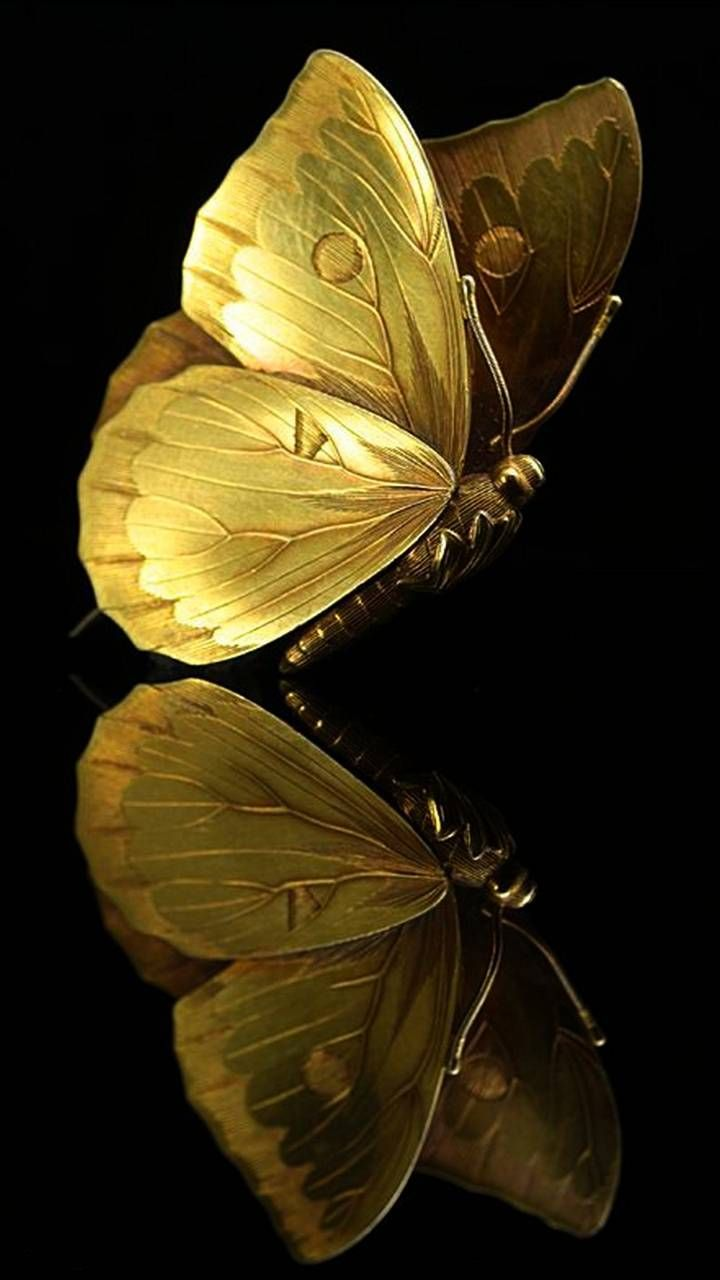 Download Gold Butterfly Wallpaper By Hende09 53 Free On Zedge Now Browse Millions Butterfly Wallpaper Iphone Butterfly Wallpaper Black And Gold Aesthetic
