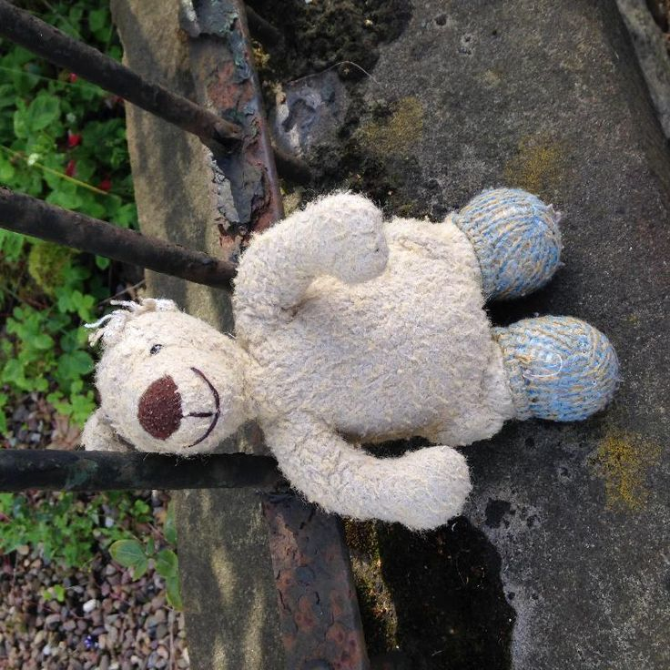 Found on 27 Jul. 2016 @ Ferry Road, Edinburgh . Found on Ferry Road near Trafalgar Street. We're keeping it safe at home. Visit: https://whiteboomerang.com/lostteddy/msg/yzw6pw (Posted by Camilla on 27 Jul. 2016)