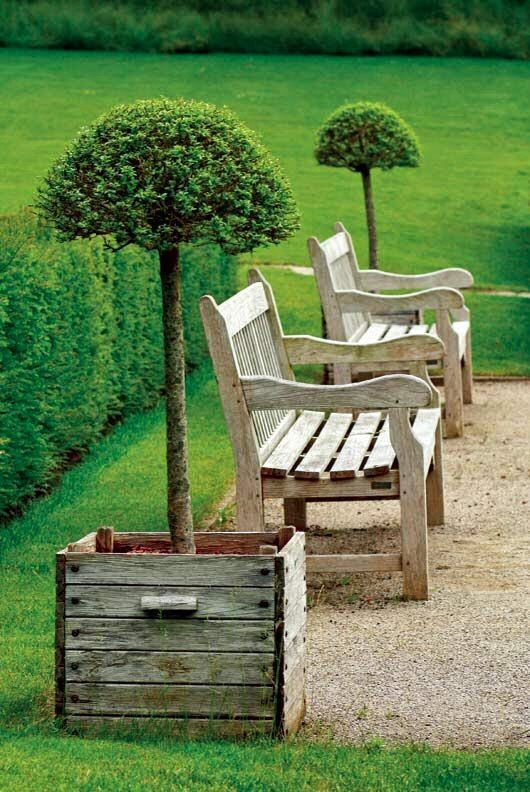 """Garden Benches Planters leave the bottom of the planters open for the """"trees"""""""