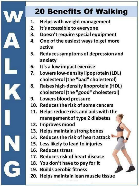 essay on walking is the best exercise So which is it click the effects of violence on tv here for today's events in and around westport, ma here's a breakdown of each 1-9-2016 is regular exercise.