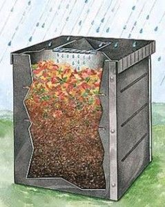 Hello Compost: A program that offers incentives to change behavior | lucidpractice.com