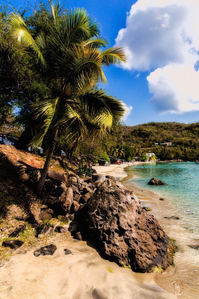 Plage de Grande Anse aux Anses d'Arlet.