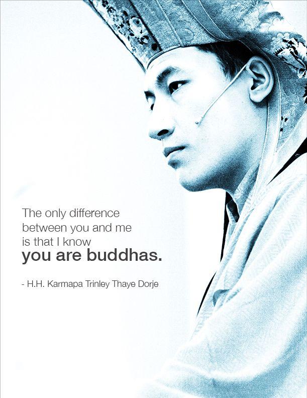 Buddhist Quote, 17th Karmapa of Tibetan Buddhism