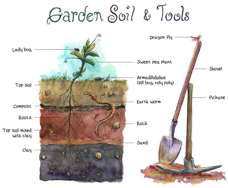 15 best veganic gardening images on pinterest urban for Gardening tools victoria