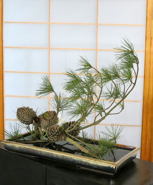 ROADSIDE IKEBANA: Interesting use of pine cones and pine.  Also links to an ikebana blog.