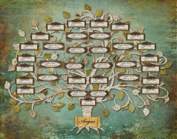Family Tree  Custom with 33 Labels  Blue by CreativeFamilyTree, $185.00