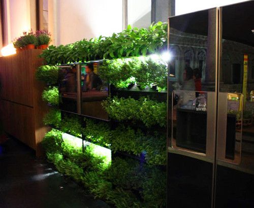 Eco Kitchen