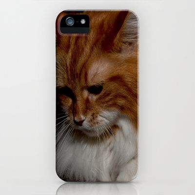 Maine+Coon+Zora+(in+Memory)+iPhone+&+iPod+Case+by+Fine2art+-+$35.00