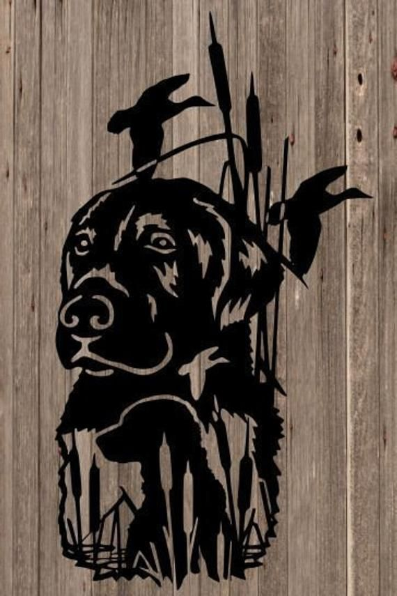 Pin On Home Duck hunting wallpaper for iphone