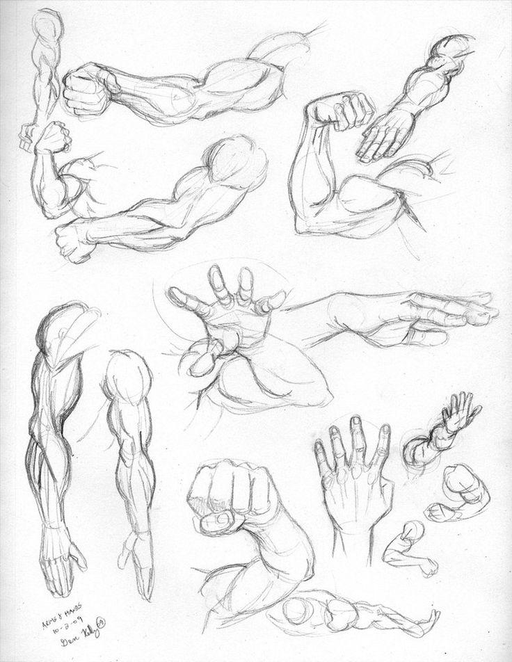 Brazos y manos masculinas