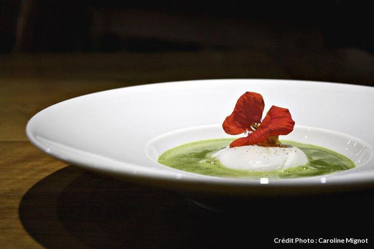 Oeuf de La Ruchotte poché, soupe d'orties vertes.