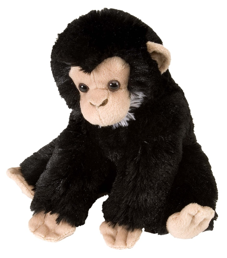 Get a monkey for your little monkey at The Mamas Expo on May 4th 2014 - WE KNOW its a chimpanzee… but monkey sounds better!