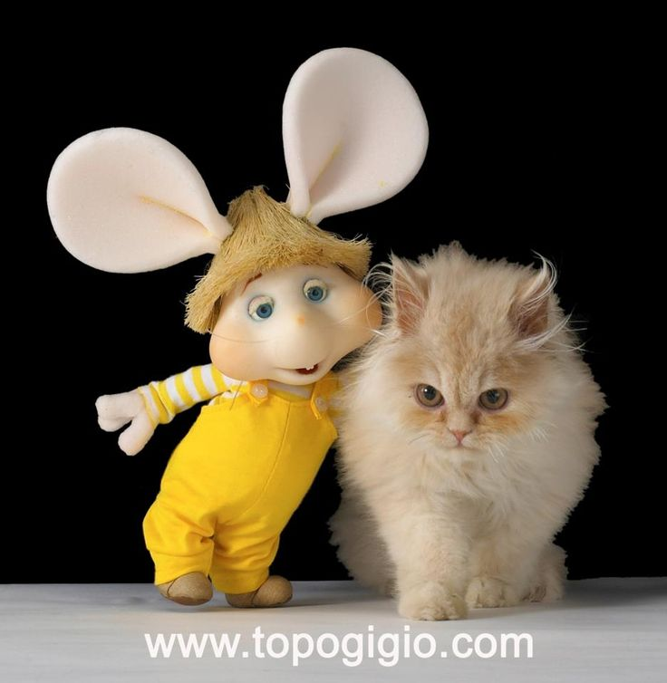 topo gigio Omg! It's topi gogio. I used to watch this show in Spanish everyday. Loved him!