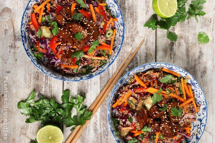 Quinoa met rode kool Thaise dressing en gember seitan