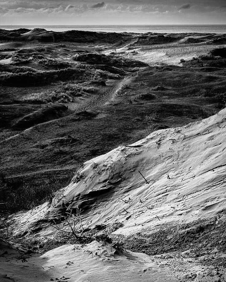 Shifting Sands..  4/7 in the nature challenge. Taken at Merthyr Mawr Sand Dunes, made famous as the desert backdrop in the filming of Lawrence of Arabia. Taken on a walk from the car park, through the dunes, heading towards the sea. Quite an energy zapping climb through the soft sand to the top of the dunes, but worth the view. Loved the textures and contrasts so really glad they came out as I saw them.  #Olympus Em5MkII 12-40mm f2.8 pro lens @ ISO 200 22mm f5.6 1/320sec