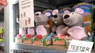 YouTube: Die verrückte Maus von der #Algarve.