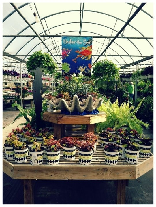 42 Best Hc Retailers Images On Pinterest Chicago Heights Garden Centre And Outdoor Ideas
