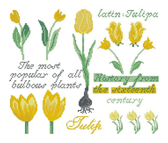 Cross stitch pattern TULIP SAMPLER  cross