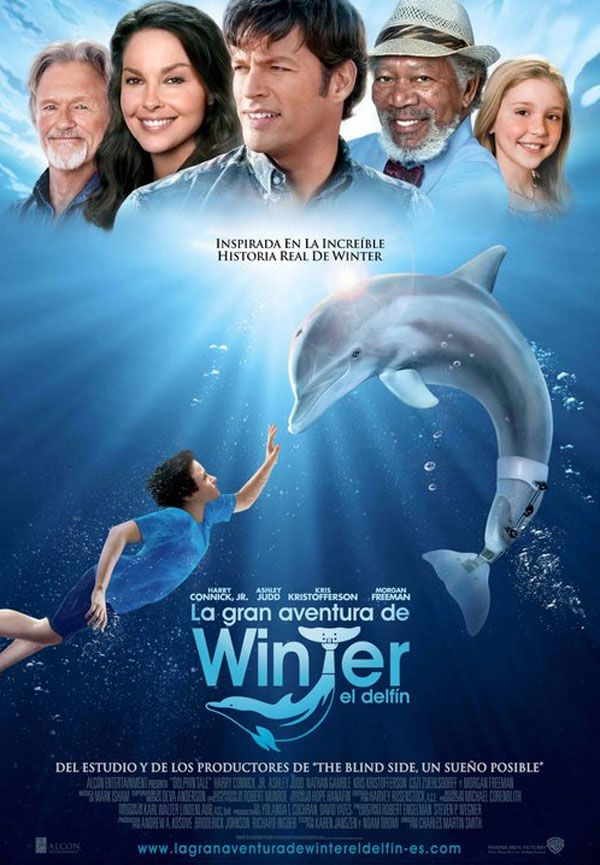 Una película dirigida por Charles Martin Smith. 'La gran aventura de Winter' está basada en la historia real de un niño que encontró varado un delfín en la playa después de que perdiera una aleta en una trampa para cangrejos. Con la ayuda de un biólogo marino y de un especialista en prótesis y ort...