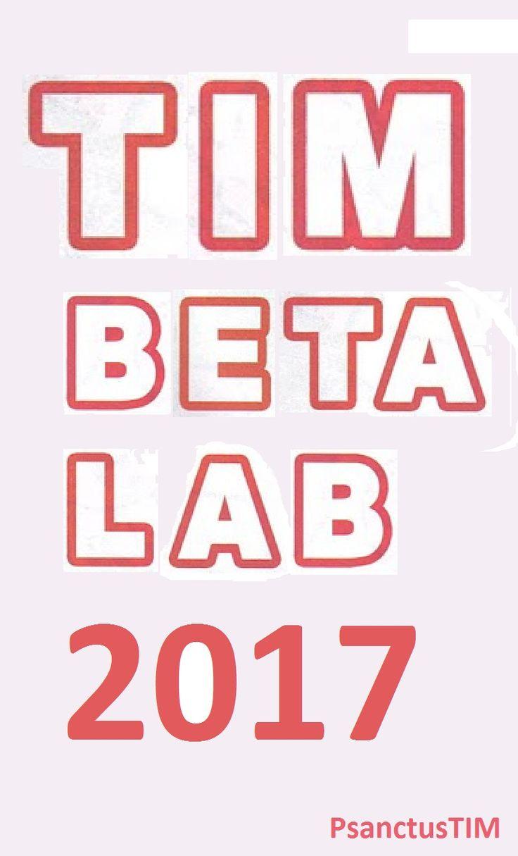 TIMbeta Lab 2017