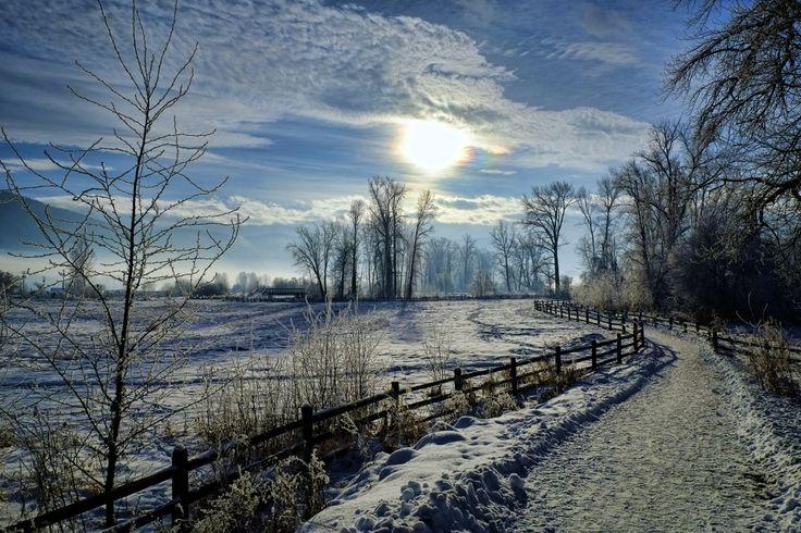 http://vipmedia.globalnews.ca/2014/12/rod-mclean-lumby-trail.jpg
