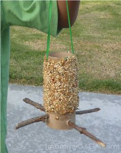 Toilet Paper Roll Bird Feeder | AllFreeKidsCrafts.com