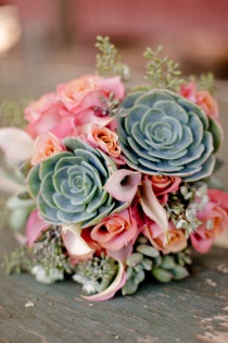 I just love everything about this arrangement the bit of blue/green plant just ties it all together