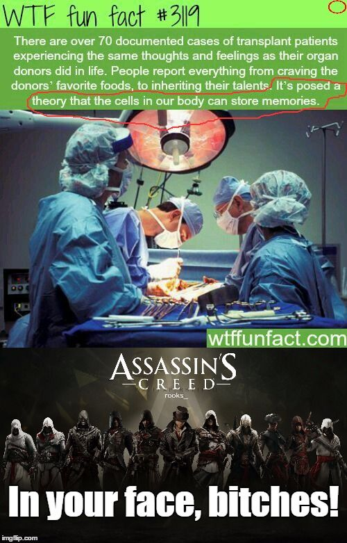 Assassin's Creed Funny << XD XD XD