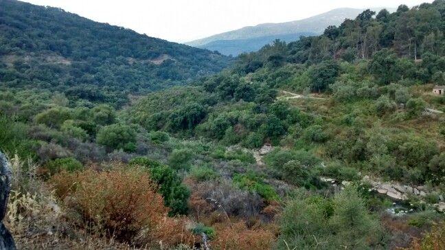 Impresionantes vistas del parque natural de los Alcornocales.