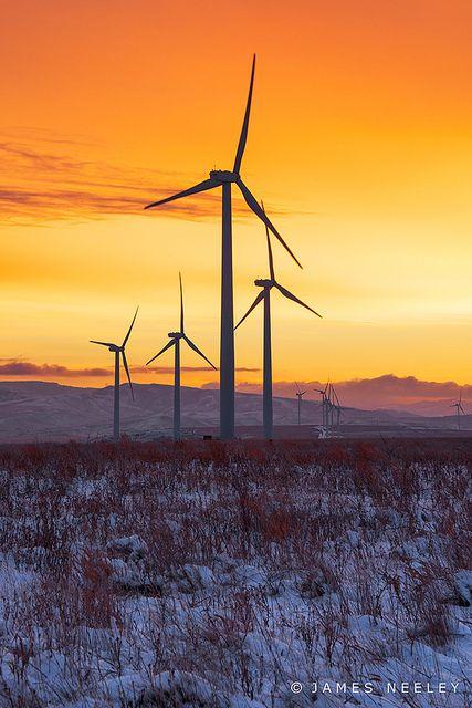 Wind generators at sunrise, east of Idaho Falls