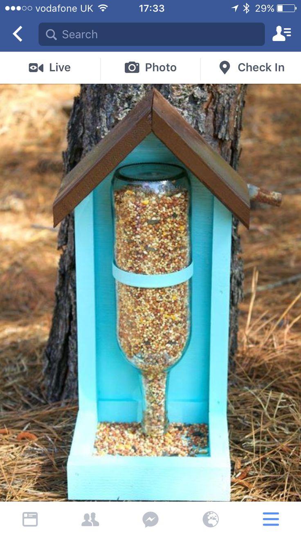 Cool bird feeder idea