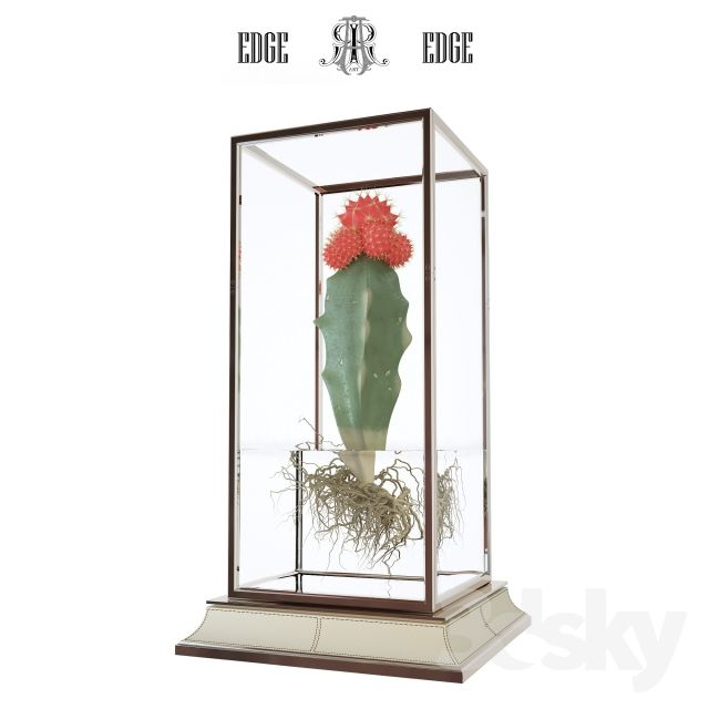 Cactus in a vase on a stand