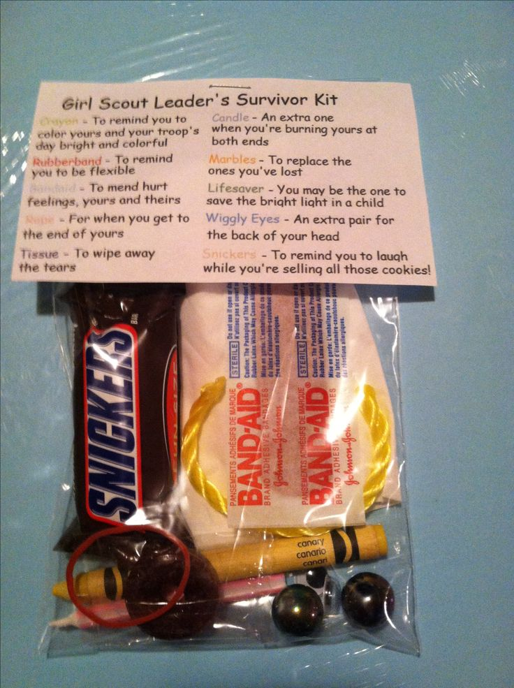 "Girl Scout leader survival kit... not for girl scouts obviously, but just a ""kit"" describing what each thing is for"