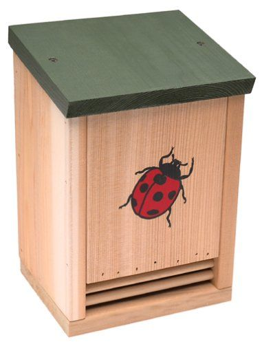 How to make a Wood Ladybug House. Excellent instructions and diagrams.