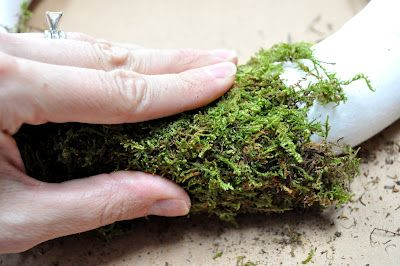 moss wreath tutorial
