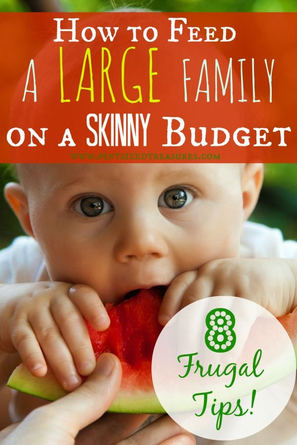 Got a lot of munchkins to feed? Need some grocery budget ideas to help you feed your family hearty, yummy meals and fun snacks? Try these tips to save lots of money on your grocery bill and add some yummyiness to your fridge! #budgeting #moneysavingtips