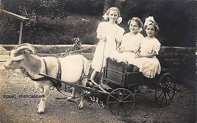 HOT-SPRINGS-ARKANSAS-034-KIDS-RIDING-GOAT-PULLED-WAGON-034-RPPC-REAL-PHOTO-POSTCARD