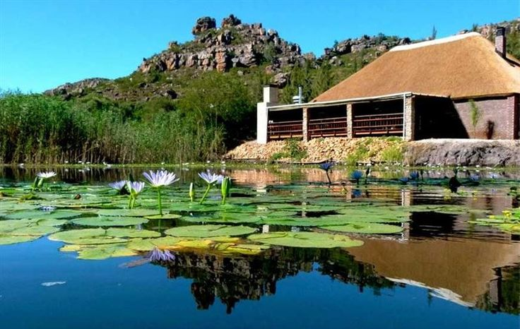 Koningskop - Koningkop is located just of the N7 on route to Citrusdal, on the farm Wilgerbosdrift. Here guest can enjoy the great outdoors camping under large oak trees or stay in one of two self-catering units. The ... #weekendgetaways #citrusdal #southafrica
