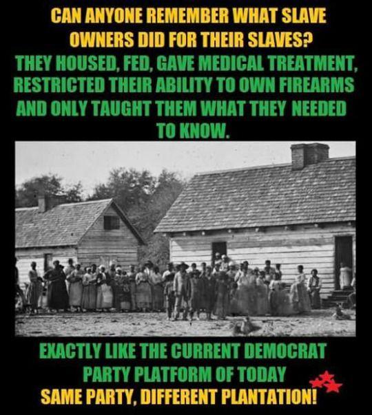 Democrat plantations