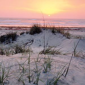 Padre Island National Seashore    Texas   Everything is bigger in Texas, including this 70-mile stretch of beach between Corpus Christi and South Padre Island. Five miles of beach are open to two-wheel-drive vehicles; another 55 miles require four-wheel-drive vehicles, which adventurous types use to explore a wilderness as untamed as a wild mustang. nps.gov/pais