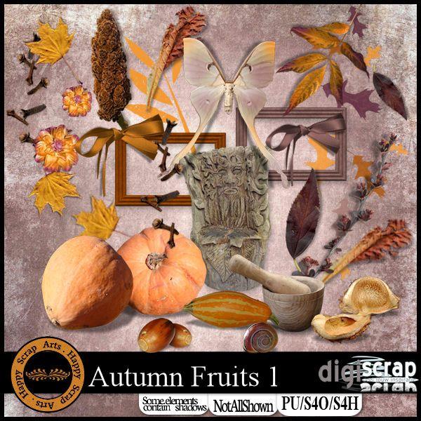 <strong>Happy Scrap Arts | </strong> Een mooie kit met herfstkleuren geschikt voor al jouw herfst foto's.