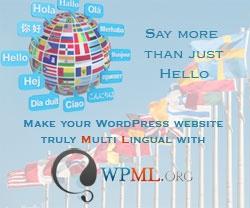 Setting up WPML