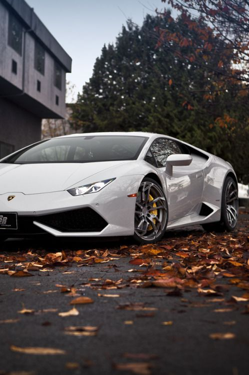 expensive cars best 25 expensive cars ideas on pinterest expensive sports cars
