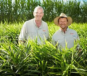 Carter & Spencer - specialists in fresh produce procurement, marketing and logistics.