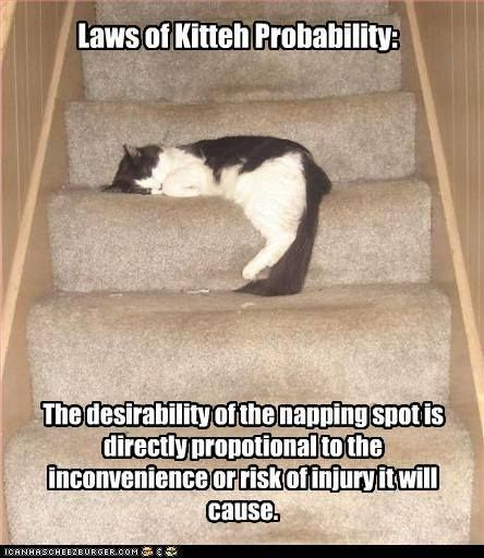 I have 6 cats and a two story home.  The probability of a cat on the stairs is 100%.